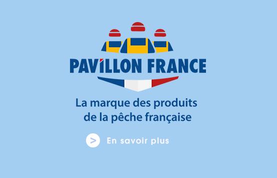 pavillon france flunch